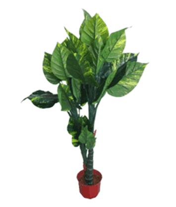 Дерево 15987 (Н-132см)