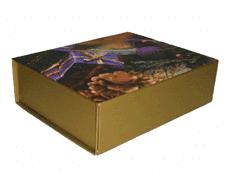 Коробочка подарочная (16*14*5см) KH-23203