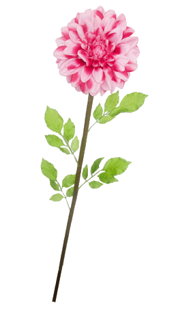 Цветок (H-120см) HR-24084