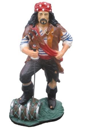 Пират (91*51см) FP-36598