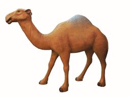 Верблюд - 17.42(283*85*210см)