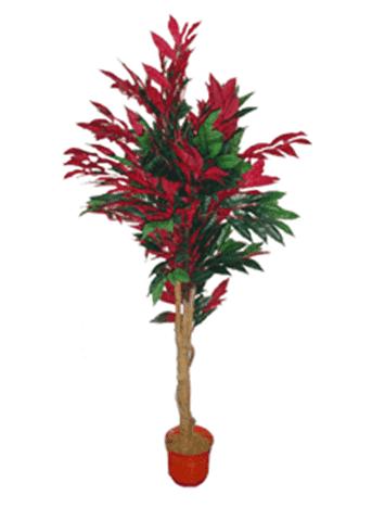 Дерево 15093 (Н-173см)