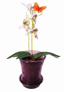 Держатель д/орхидей